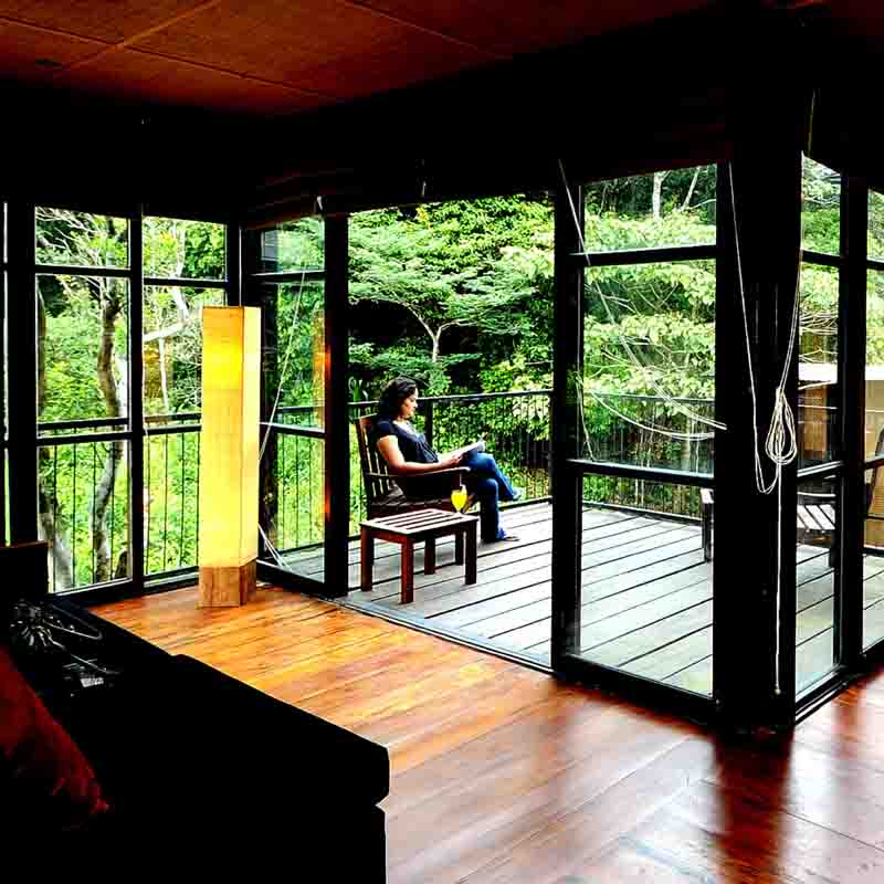 Guesting unwinding in the beauty of the Sinharaja forest