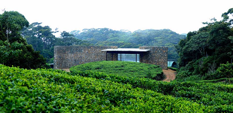 entrance to the lodge overlooking the tea plantation