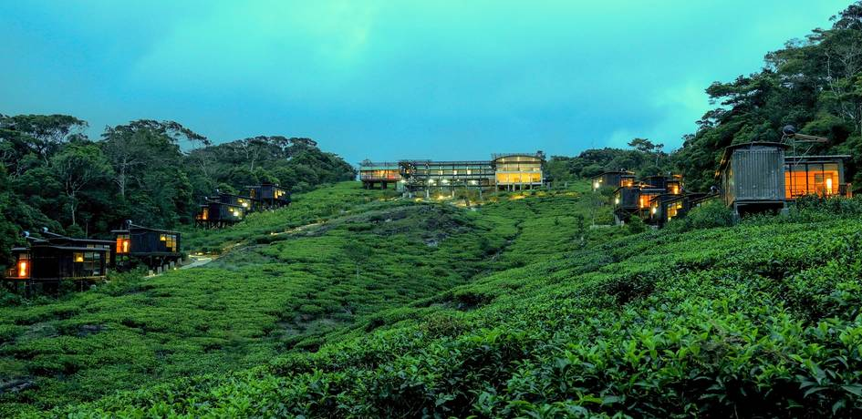 View of the lodge across tea plantations