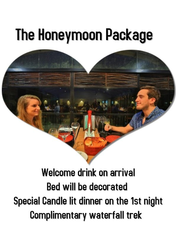 Special Honeymoon packages for the foreign guests