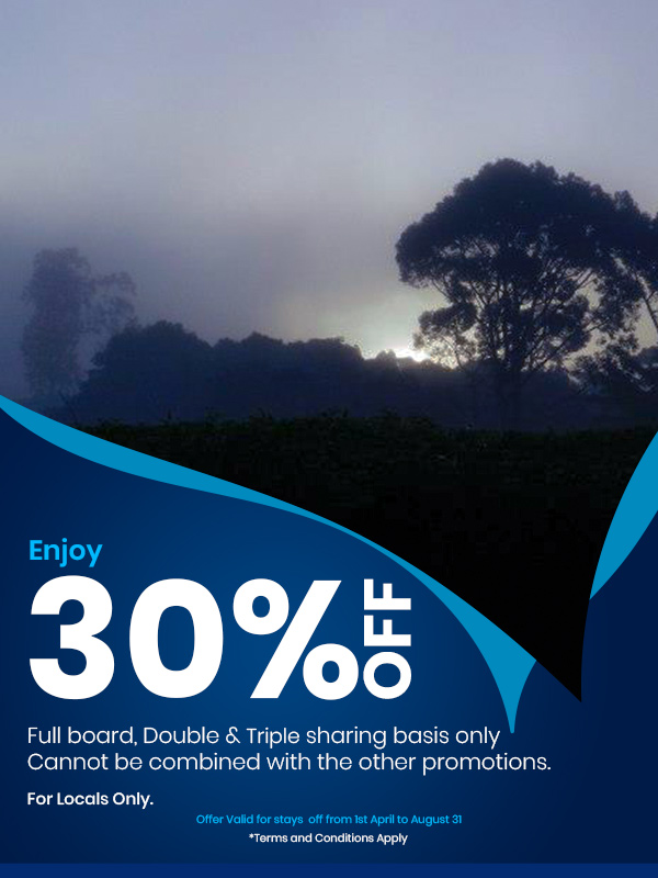 rainforest ecolodge 30 % off from 1st April to August 31