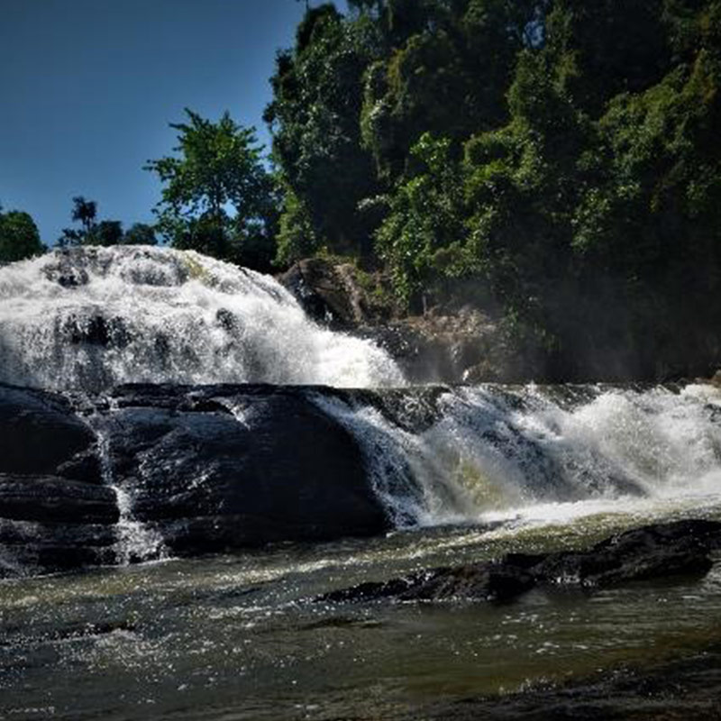Waterfall in the Sinharaja Forest