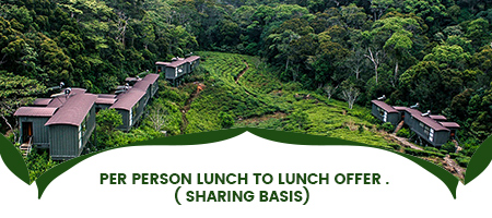 Lunch to Lunch Offer
