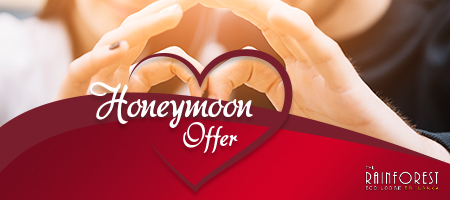 Honeymoon offer  for locals