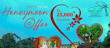 Honeymoon Local Package