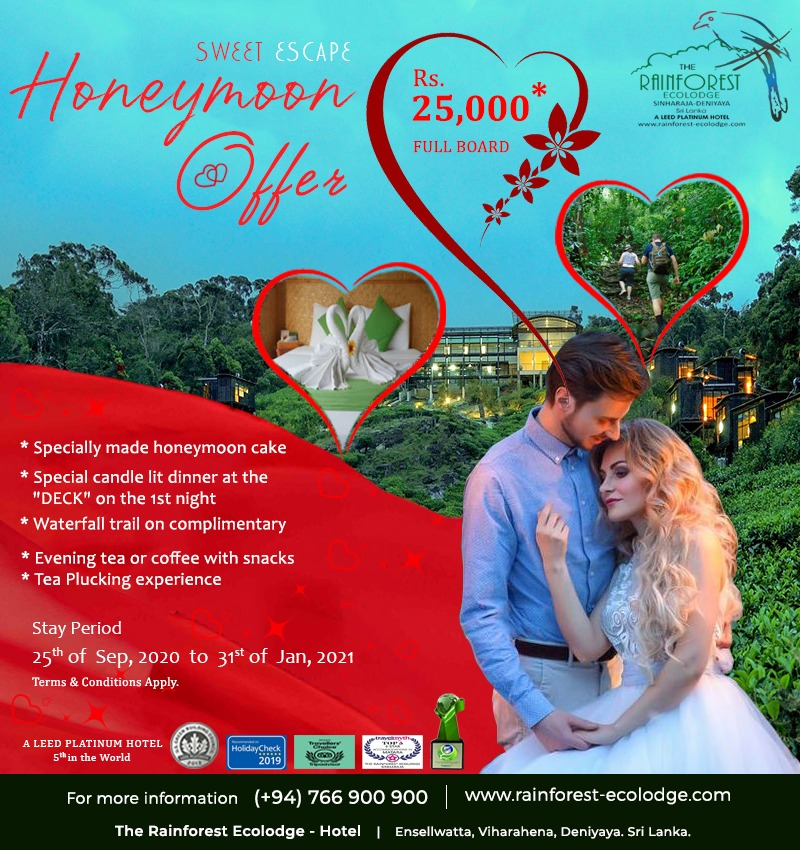 Honeymoon-package-rainforest-ecolodge